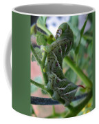 'mater Bug Coffee Mug