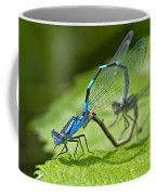 Mating Damselflies Coffee Mug