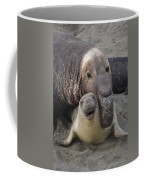 Mating Fun Coffee Mug