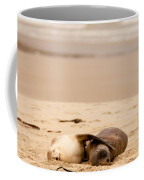 Mating Hookers Sealions Taking A Nap On Beach Coffee Mug
