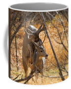 Mating Mulies Coffee Mug