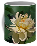 Mature Lotus Flower And Cute Hovering Honeybee Coffee Mug