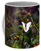Maui Butterfly Coffee Mug