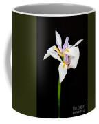 Maui Lilies On Black Coffee Mug