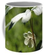 May Apple Flower Coffee Mug