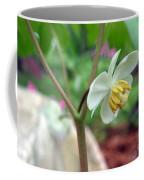 May Apple Coffee Mug
