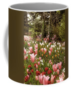 May Tulips Coffee Mug