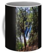 Mcarthur-burney Falls Side View Coffee Mug
