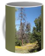 Meadow Over Oak Creek Canyon  Coffee Mug
