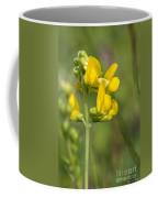 Meadow Vetchling Yellow Flower Coffee Mug