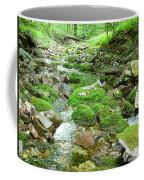 Meandering Stream Coffee Mug