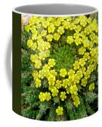 Medusa Succulent Flower Cluster Coffee Mug