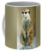 Meerkat Suricata Suricatta Coffee Mug