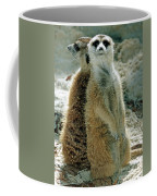 Meerkats Suricata Suricatta Coffee Mug