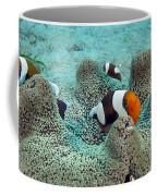 Meet The Nemo Family Coffee Mug