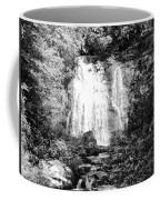 Meigs Falls Smoky Mountains Bw Coffee Mug