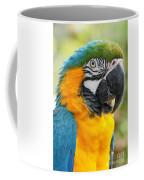 Mele E Manono Ia Ea Macao Tropical Birds Of Hawaii Coffee Mug