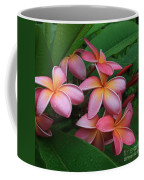 Melia Hae Hawaii Pink Tropical Plumeria Keanae Coffee Mug