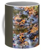Memorial Falls Iv Coffee Mug
