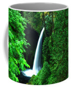 Menteko Falls  Coffee Mug