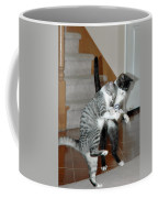 Meow Vows Coffee Mug