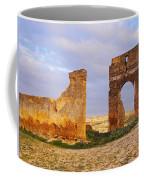 Merinid Tombs Ruins In Fes In Morocco Coffee Mug