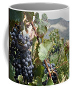Merlot Ready Coffee Mug