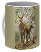 Mesopotamian Fallow Deer 4 Coffee Mug