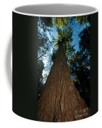 Methuselah Coffee Mug