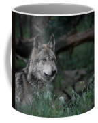 Mexican Grey Wolf Coffee Mug