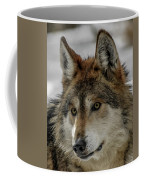 Mexican Grey Wolf Upclose Coffee Mug