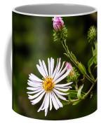 Michaelmas Daisy Coffee Mug