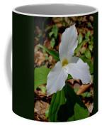 Michigan Coffee Mug
