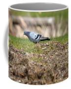 Michigan Rock Pigeon Coffee Mug