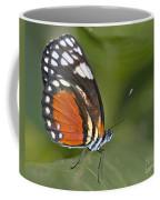 Micro Wings... Coffee Mug