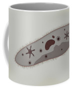 Microscopic View Of Paramecium Coffee Mug by Stocktrek Images