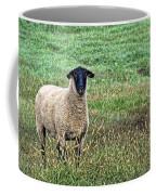 Middle Child - Blackfaced Sheep Coffee Mug