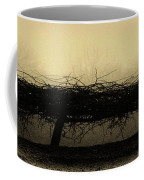 Middlethorpe Tree In Fog Antique Yellow Panorama Coffee Mug