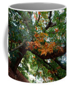 Mighty Fall Oak #1 Coffee Mug