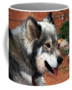 Miley The Husky With Blue And Brown Eyes Coffee Mug by Doc Braham
