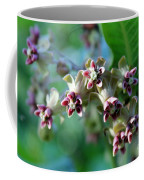 Milkweed Bloom Coffee Mug