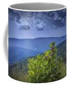 Milkweed Plants Along The Blue Ridge Parkway Coffee Mug