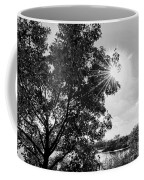 Mill Creek Marsh Afternoon Sun Coffee Mug