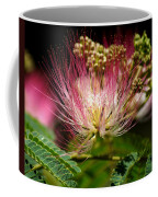 Mimosa- The Beautiful Bloom Coffee Mug