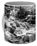 Mini Cascades Smoky Mountains Bw Coffee Mug