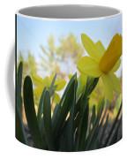 Mini Daffodils Coffee Mug