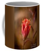 Miniature Indian Paintbrush Coffee Mug