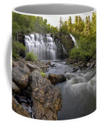 Mink Falls Coffee Mug