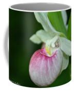 Minnesota's Lady Slipper Coffee Mug