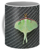 Mint Green Luna Moth Coffee Mug